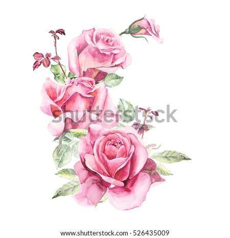 Rosebush Pattern Pink Rose Wedding Drawings Stock ...
