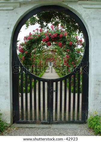 rosegarden - stock photo