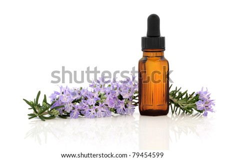 Rosemary herb flower and leaf sprig with aromatherapy essential oil glass bottle, isolated over white background. - stock photo