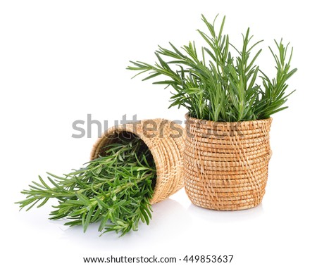 rosemary in basket on white background