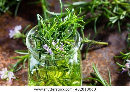 Розмарин трава применение