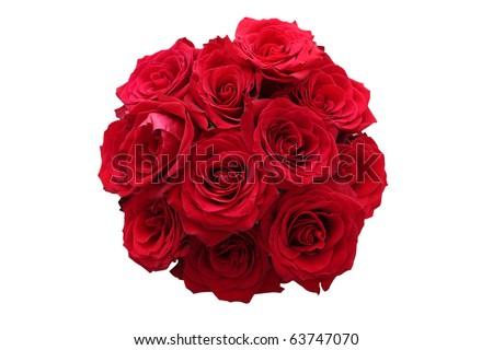 Roses - stock photo