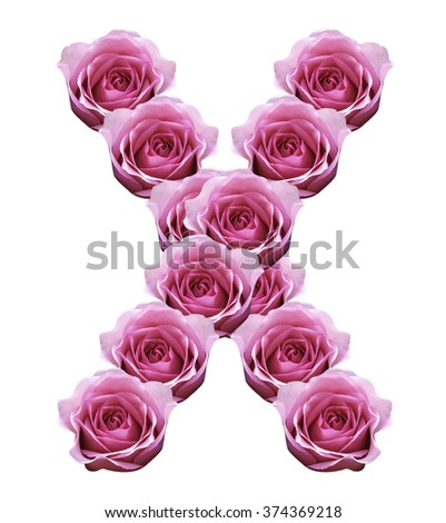 roses alphabet letters flowers roses Isolated on white background For Design - stock photo