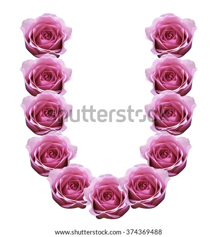 S Alphabet In Rose Stock Images si...