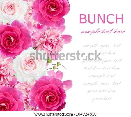 Roses and peonies flowers background isolated on white with sample text