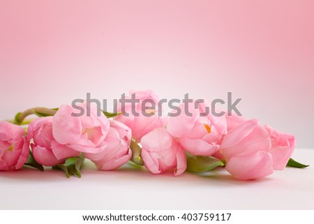 Roses bouquet on pink background