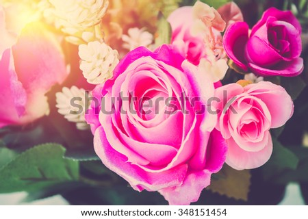 Roses flower closeup vintage filter. - stock photo