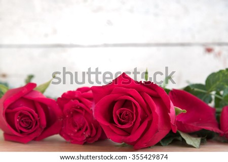 roses for valentine day with copy space, love concept - stock photo