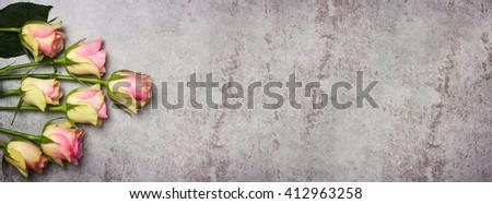 Roses, greeting card gray - stock photo