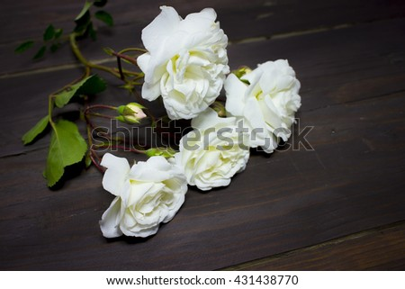 roses in a wooden background