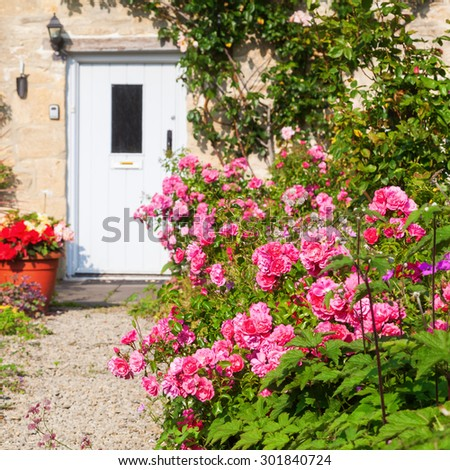roses in front of a cottage in the picturesque village Bibury, Gloucestershire, England