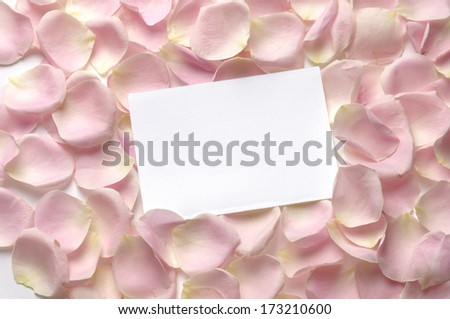 roses petals and white blank paper - stock photo