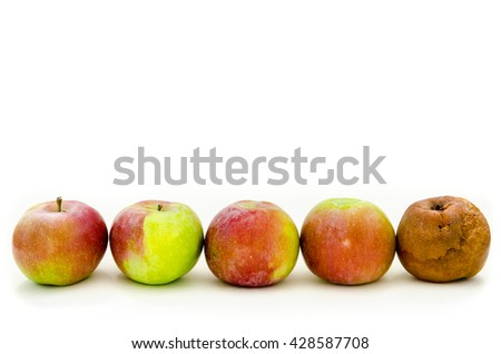 rotten apple with a lot of fresh apples - stock photo