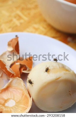 rotten egg in white plate on wood background. - stock photo