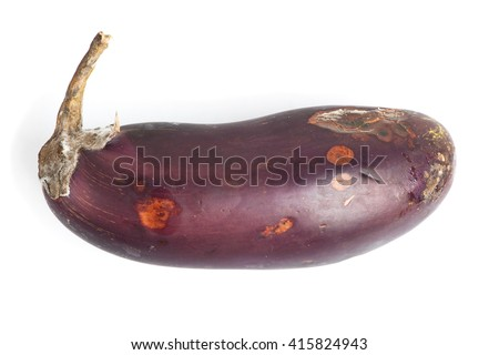 Rotten eggplant isolated on white background