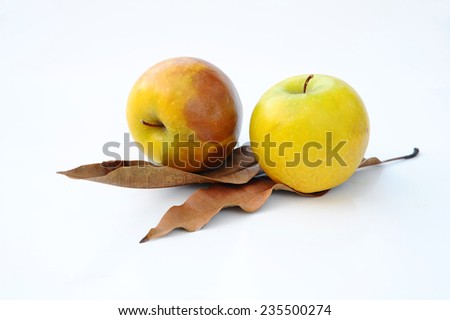 Rotten Green Apple - stock photo