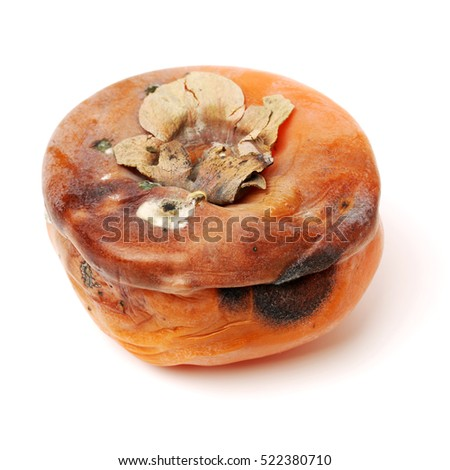 rotten persimmon fruits isolated on white background