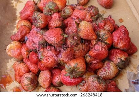 rotten strawberries on broken cardboard box - stock photo