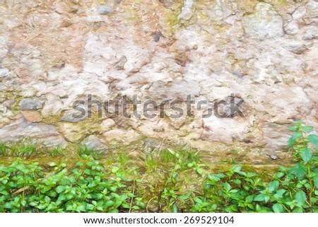 rotten wall  - illustration based on own photo image - stock photo