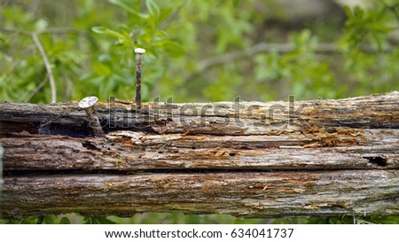 Rotten wood with a wedge, background