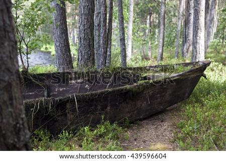 Rotten wooden boat at lakeside between pine trees at spring. Photographed in Estonia, Europe. - stock photo