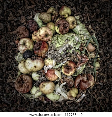 Rotting Apples on a Compost Heap. Artistically alienated to create a grungy somber atmosphere with a Wabi-Sabi feeling.