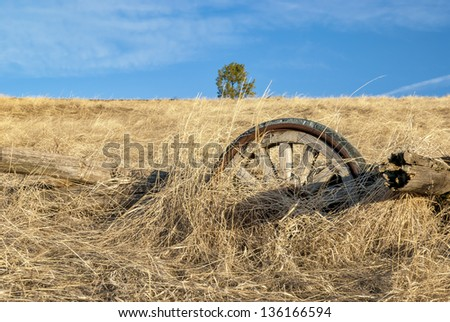 Rotting wooden wheel in an old farm field