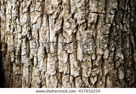 Rough tree bark horizontal format. - stock photo