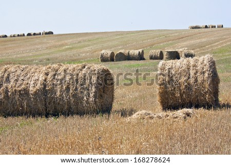 Round bale of straw in the meadow - stock photo