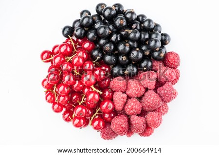 round berries composition red and black currant and red raspberry isolated on white