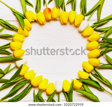 Round yellow flowers stock photo royalty free 1020722959 round from yellow flowers mightylinksfo