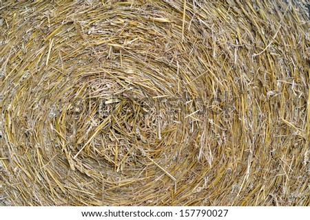 round hay bale as background