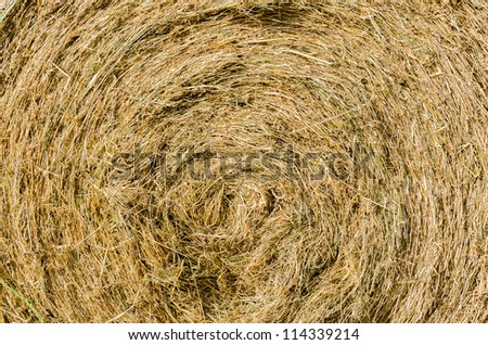 Round straw bale with texture for background - stock photo