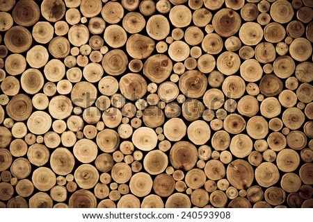 round teak wood stump background - stock photo