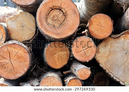 Round the ends of the logs - stock photo