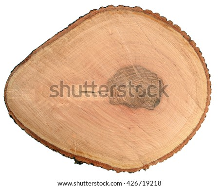 Round wooden cut with annual rings isolated on white background                                - stock photo