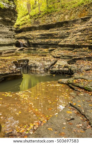 Rounded water-carved rock formations surrounded by a coating of leaves in Buttermilk Falls State Park, Ithaca, New York