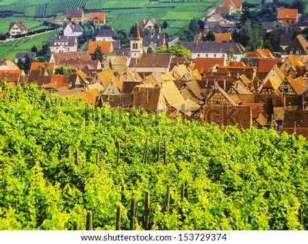 route des vins alsace france - stock photo