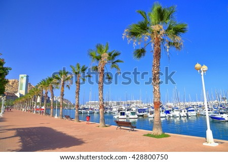 Row od sunny palm trees by the sea near the harbor of Alicante, Spain - stock photo