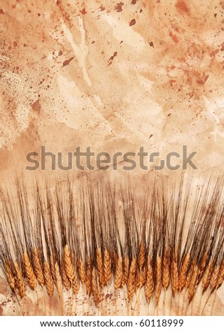 row of black bearded wheat layered with textured paper