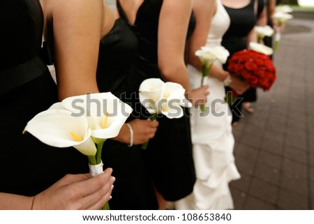 Row of Bride and Bridesmaids with Bouquets - stock photo