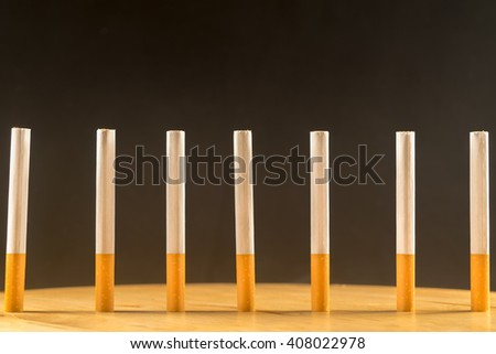 Row of cigarettes standing.