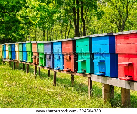 Row of colorful wooden beehives with trees in the background. - stock photo