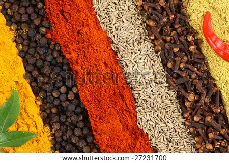 Row of dry spices - stock photo