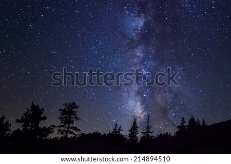 Row of evergreen trees in front of the Milky Way at Glacier Point in Yosemite National Park - stock photo