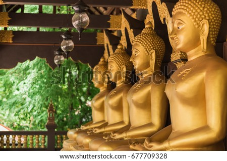 Row of golden buddha in the temple, Thailand