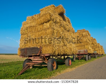 Row of Hay Wagons Along a Road in Sunny Countryside Waiting for Transport - stock photo