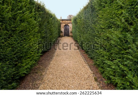 Row of Hedges and Garden Gate - stock photo