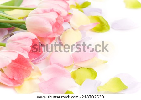 Row of real tulip blooms among scattered silk petals as a design element for Easter, Mother's Day and anything spring related. - stock photo