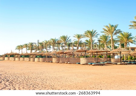 Row of wattled straw umbrellas on sunny summer tropical beach. Egypt. Sharm-el-sheikh. Outdoors.